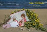 imagen Nicca profesora carpeta simil en el mar punt a punt